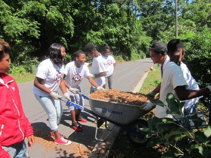 my community matters - garden