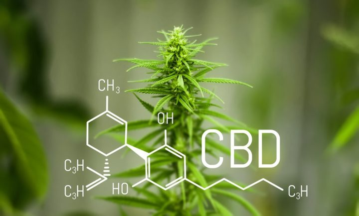 Chemistry Cannabis. Cbd Cannabidiol Formula. Science, Research M
